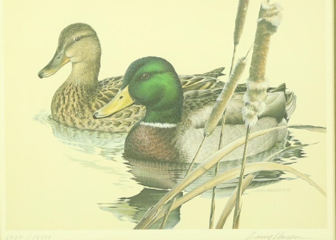 LARRY HAYDEN DUCK PRINT, #6927/16500