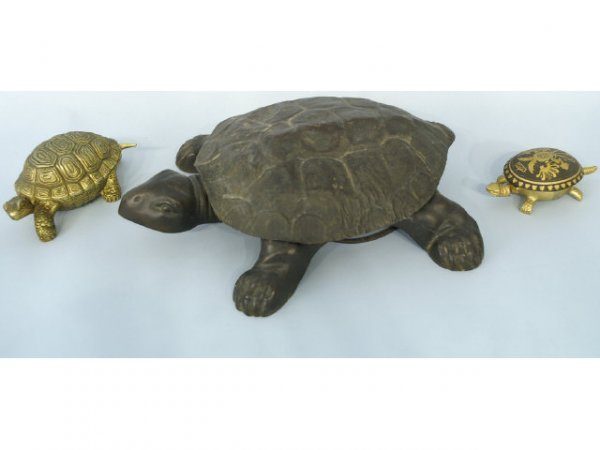 1185: Very unique mixed lot of turtles.