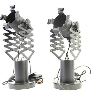PAIR OF METAL LAMPS WITH MARBLE BASES