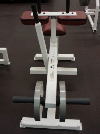 8: PRO MAXIMA CALF PRESS