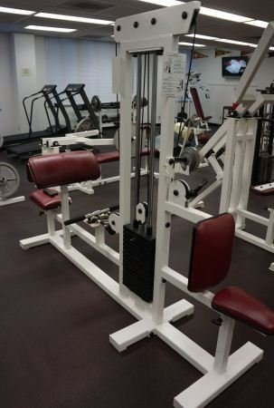 17: TRICEP AND BICEP TWO STATION MACHINE