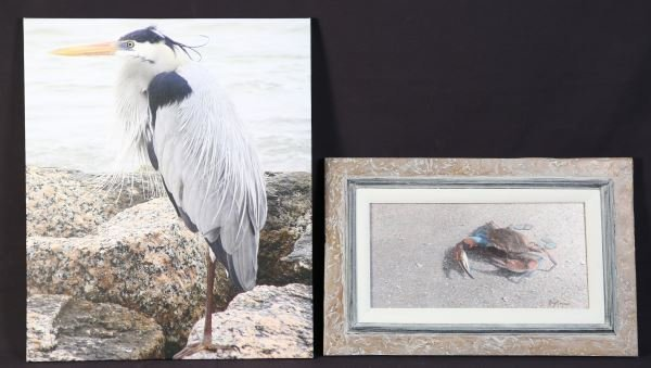 PHOTOGRAPH MOUNTED ON CANVAS AND PAINTING OF CRAB