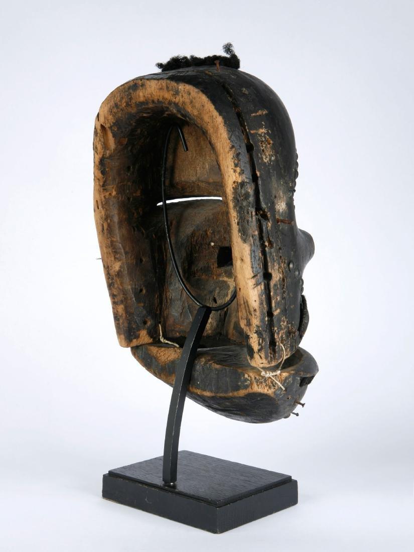 Klappkiefer-Maske - 5