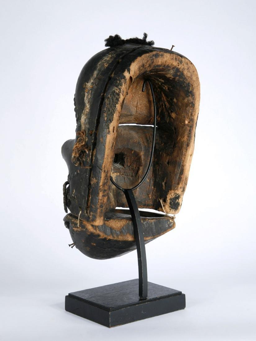 Klappkiefer-Maske - 7