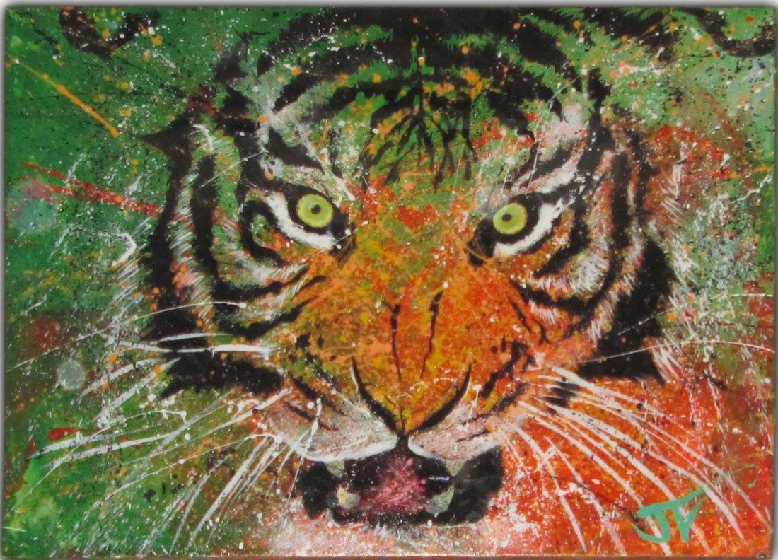Tiger by Jay Valentine