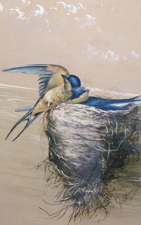 1009: SWIFT BIRD - BEARDSLEY- OIL (Amer 1867-1938)