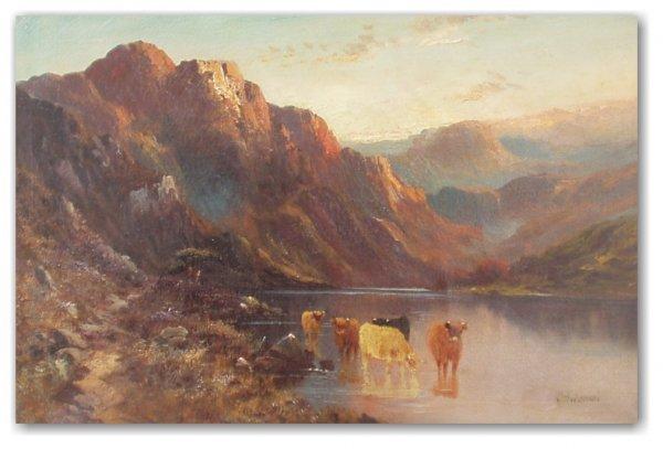 1023: ALFRED DE BREANSKI - HIGHLAND CATTLE