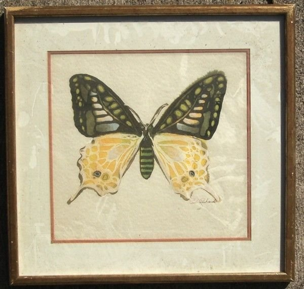1205: BUTTERFLY - MIXED MEDIA - PAUL RICHARDS - 2