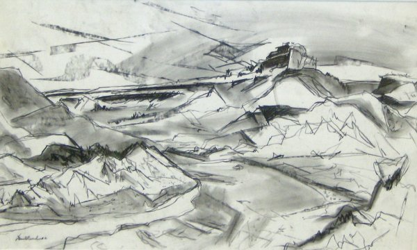 9: Doel Reed - New Mexico Drawing