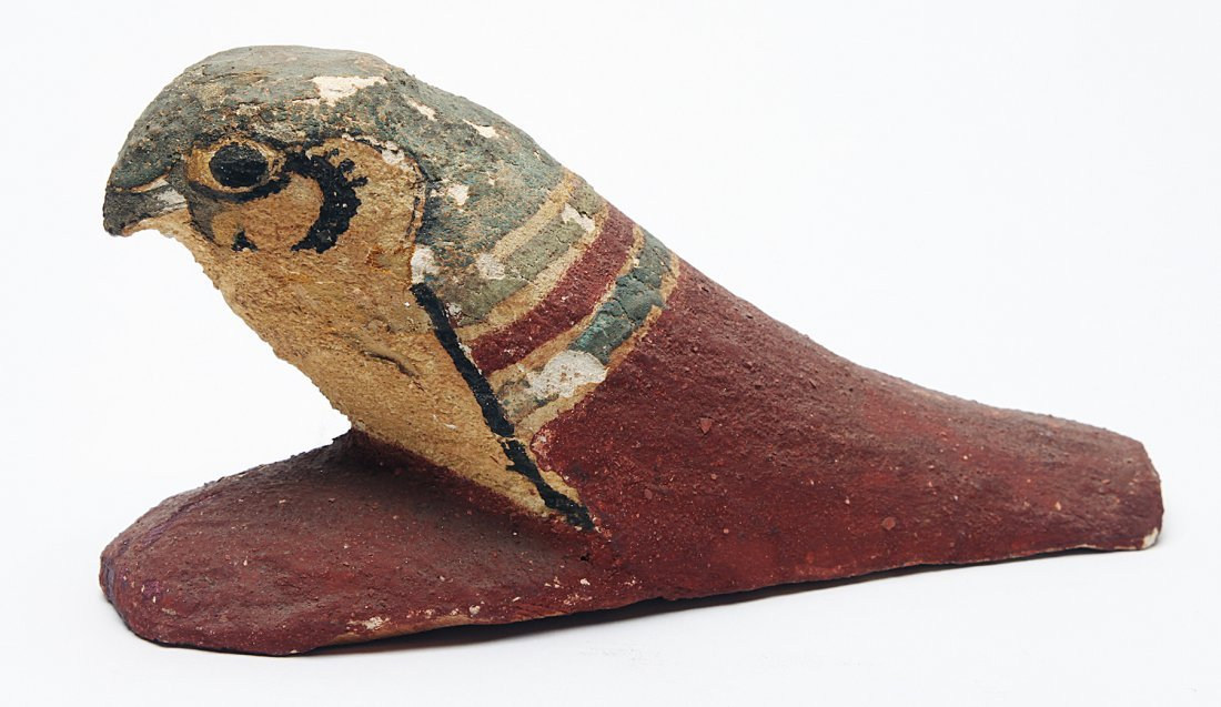 A Large Egyptian Wood Falcon