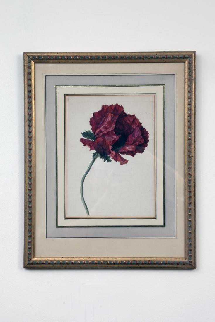 A Flower Painting By Sebastian Wegmayer