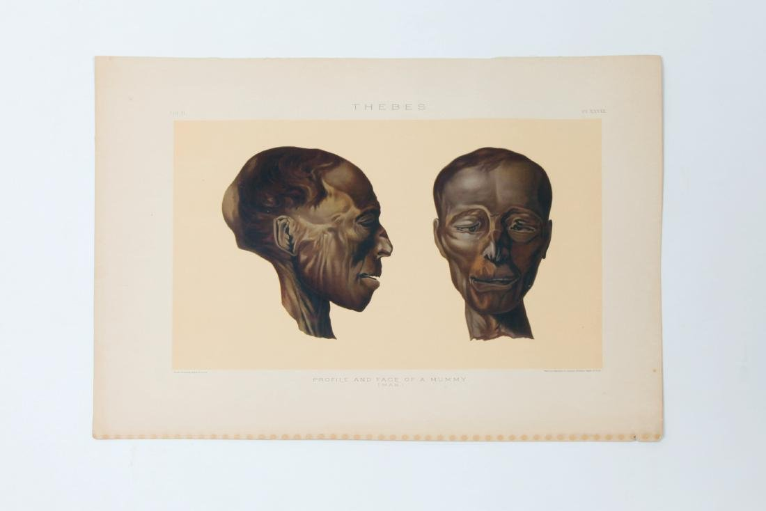 3 Prints of Egyptian Mummies