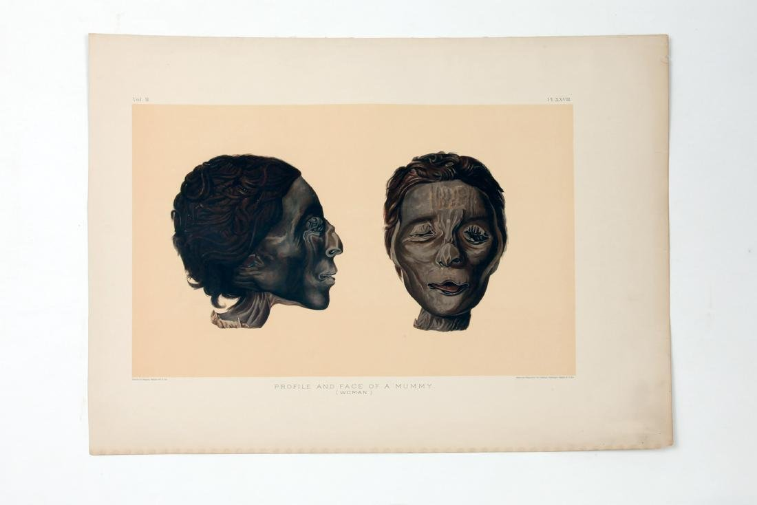 3 Prints of Egyptian Mummies - 2