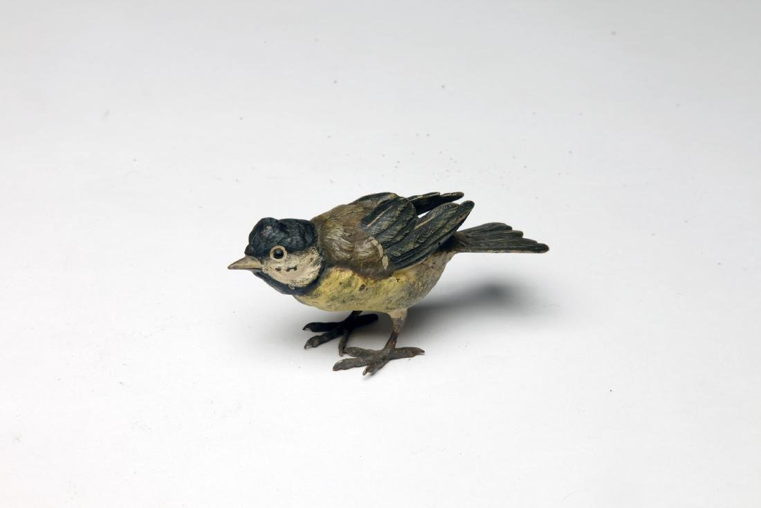 A Cold Painted Austrian Bronze Bird - 4