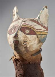 Ancient Egyptian Cat Mummy