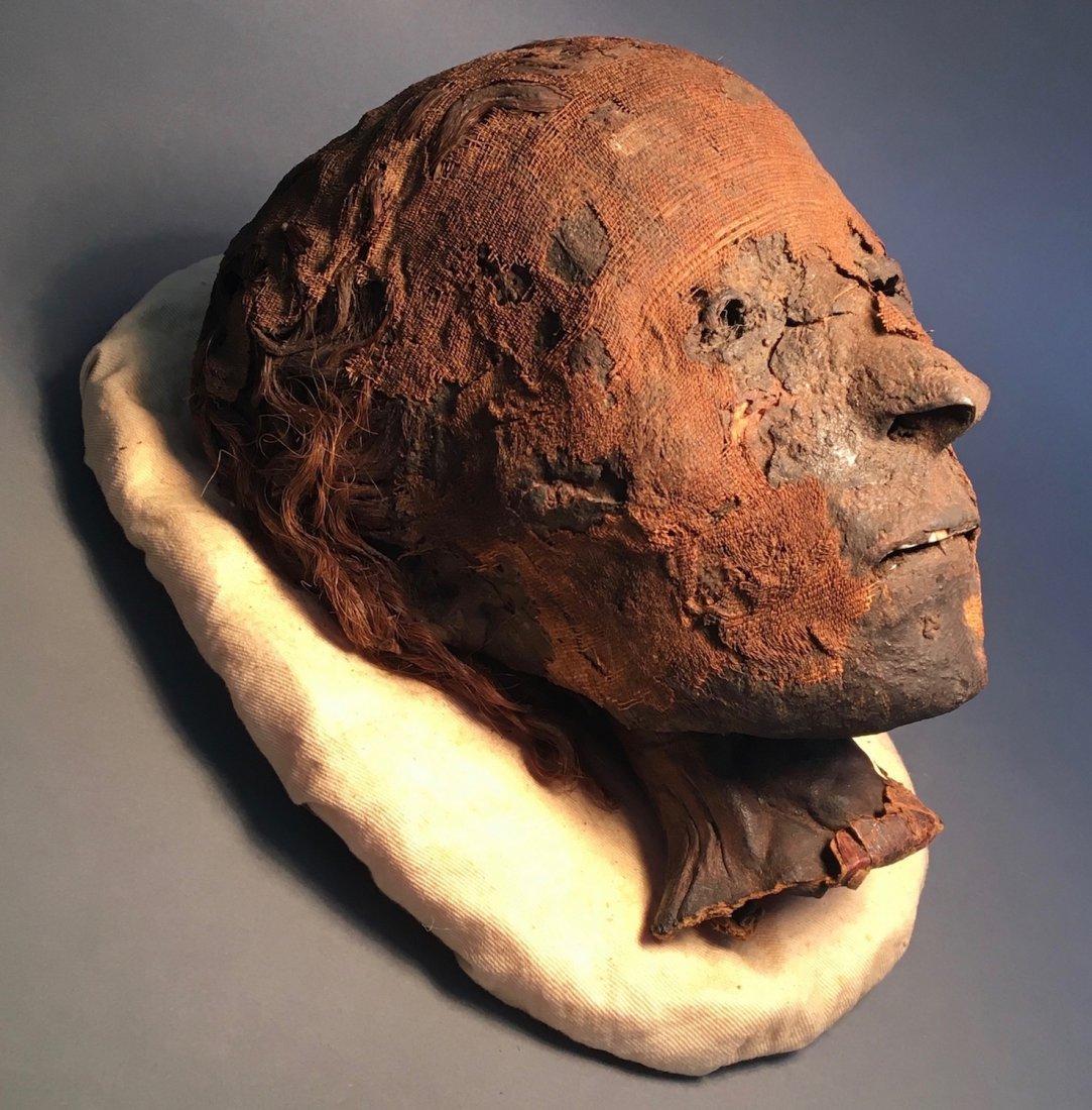 Important Ancient Egyptian Mummy Head