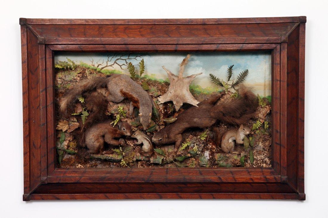 Antique Taxidermy Squirrel Diorama
