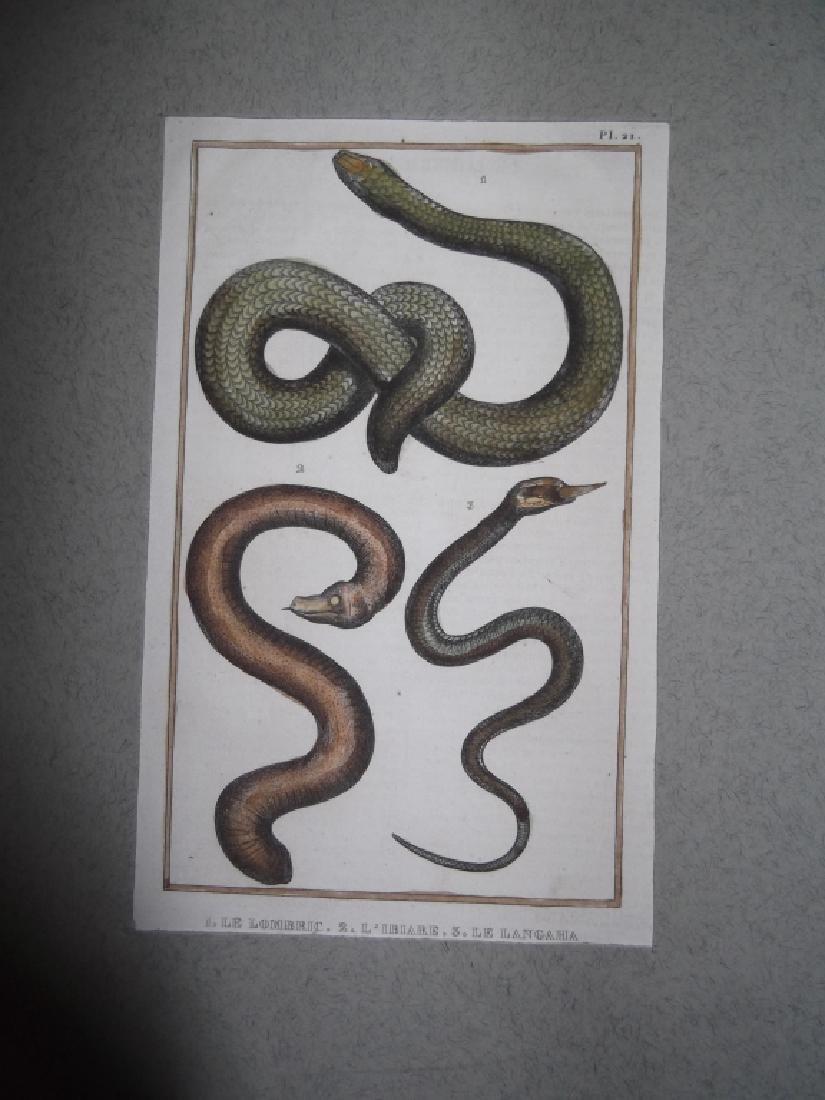 7 20th c. lithographs - 2