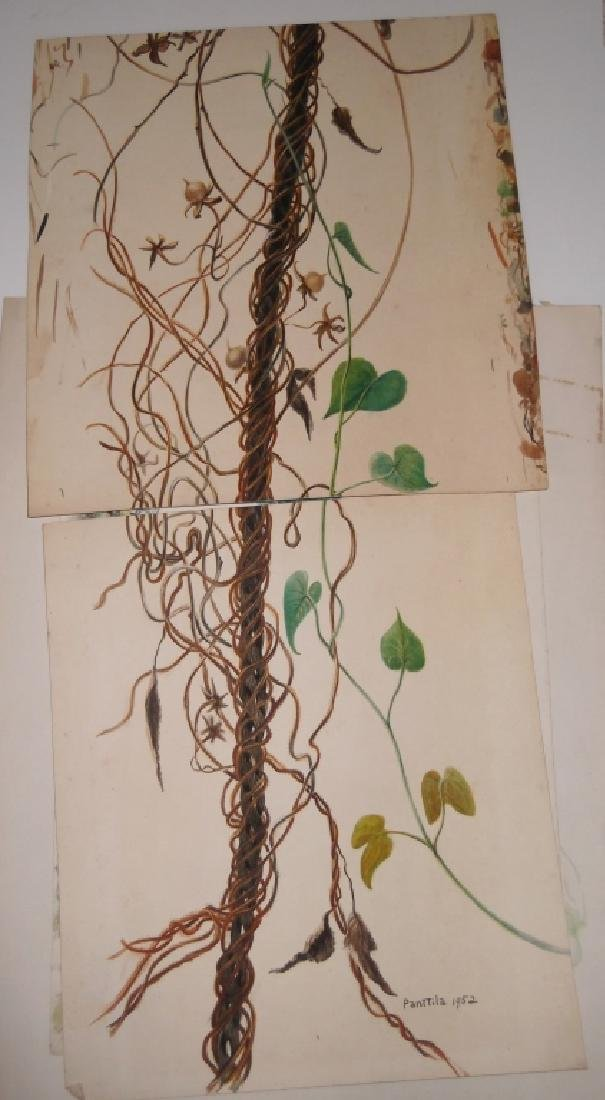 7 1950's watercolors by  Panttila - 3