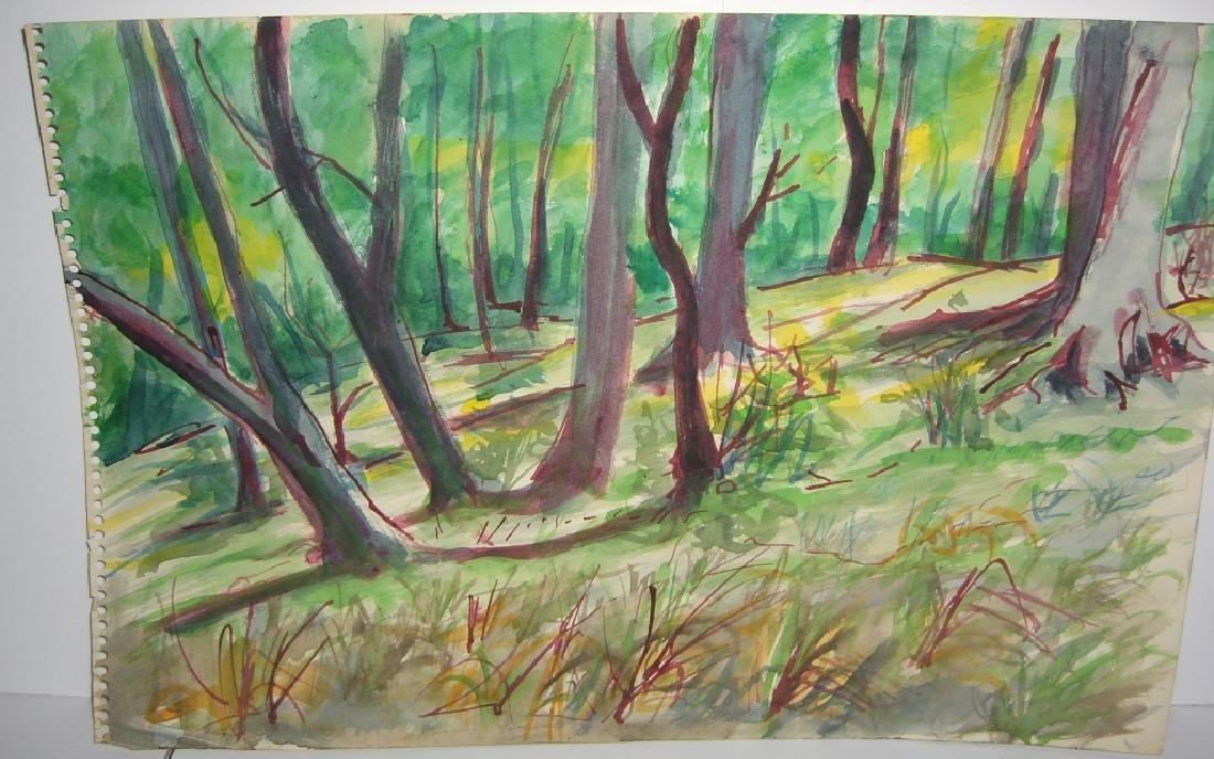 7 original watercolors by  Panttila - 6