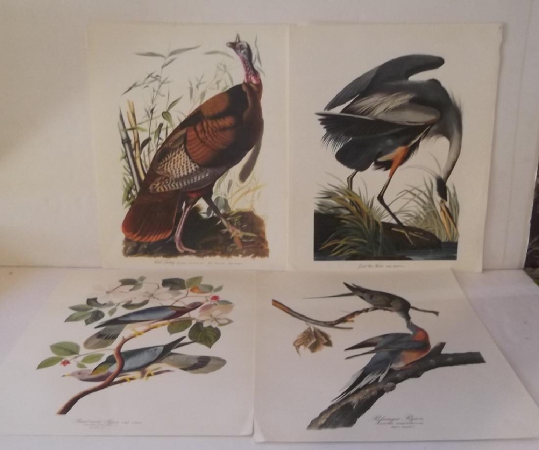 2  sets of The Audubon Foilo - 2