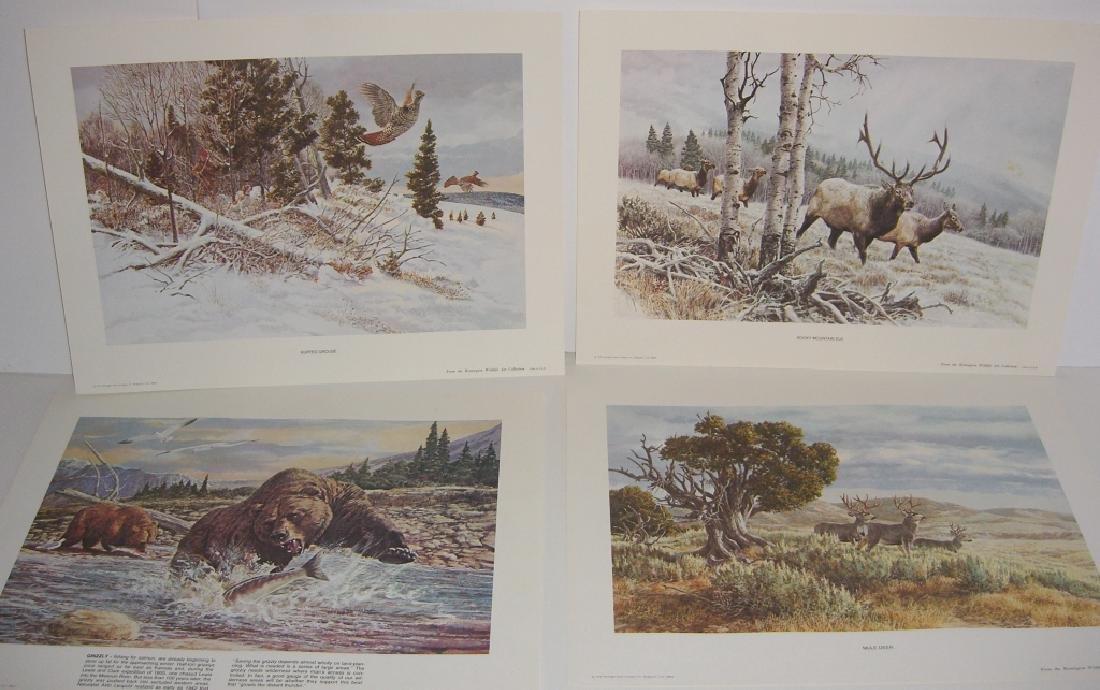 23 Remington Wildlife lithograph prints - 11