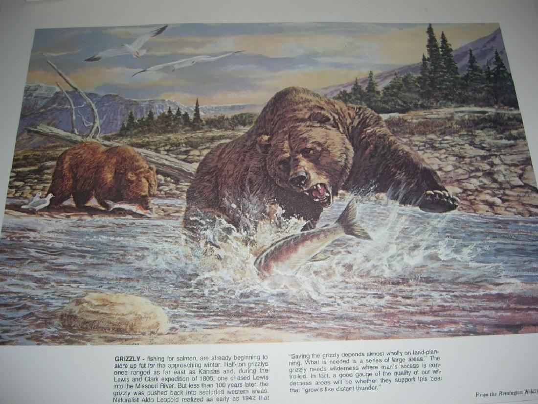 23 Remington Wildlife lithograph prints - 12