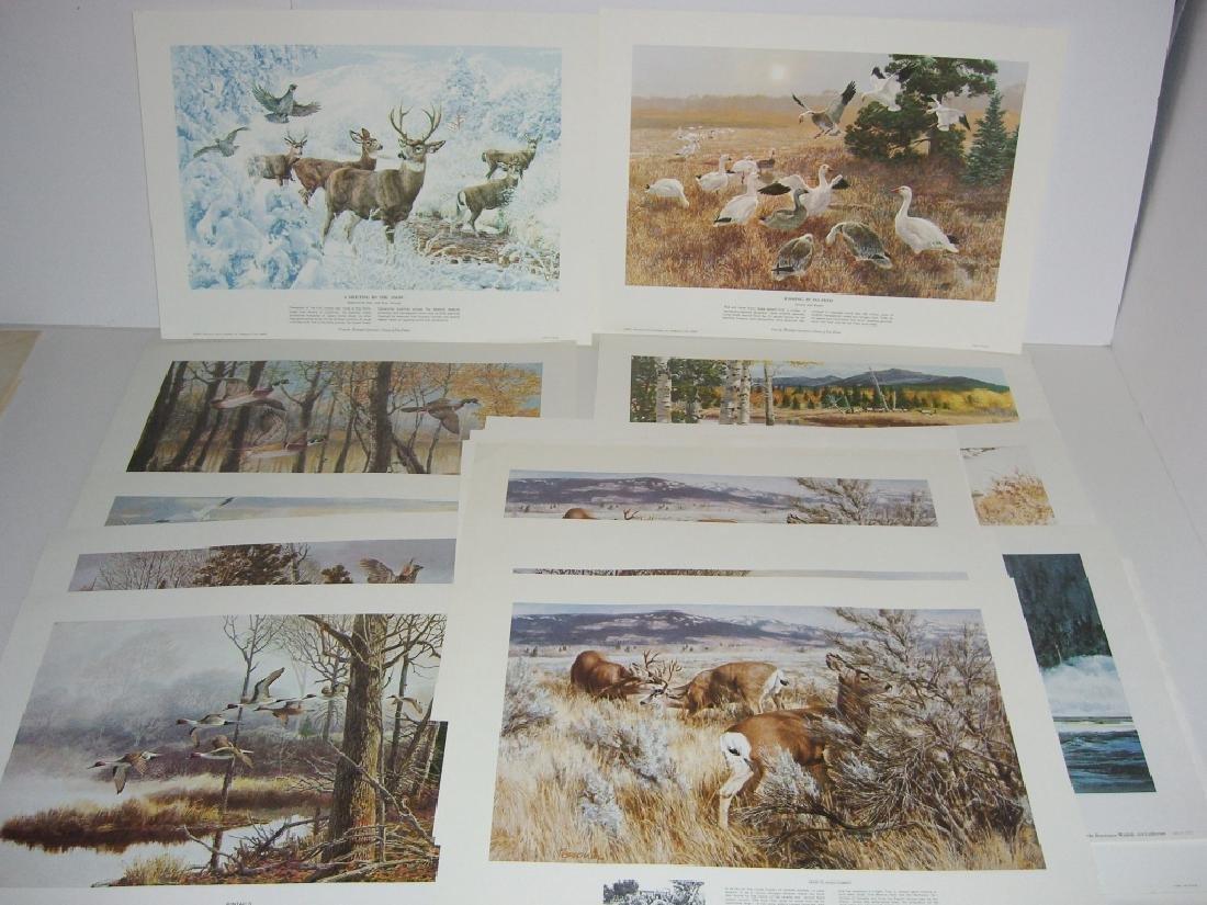 23 Remington Wildlife lithograph prints