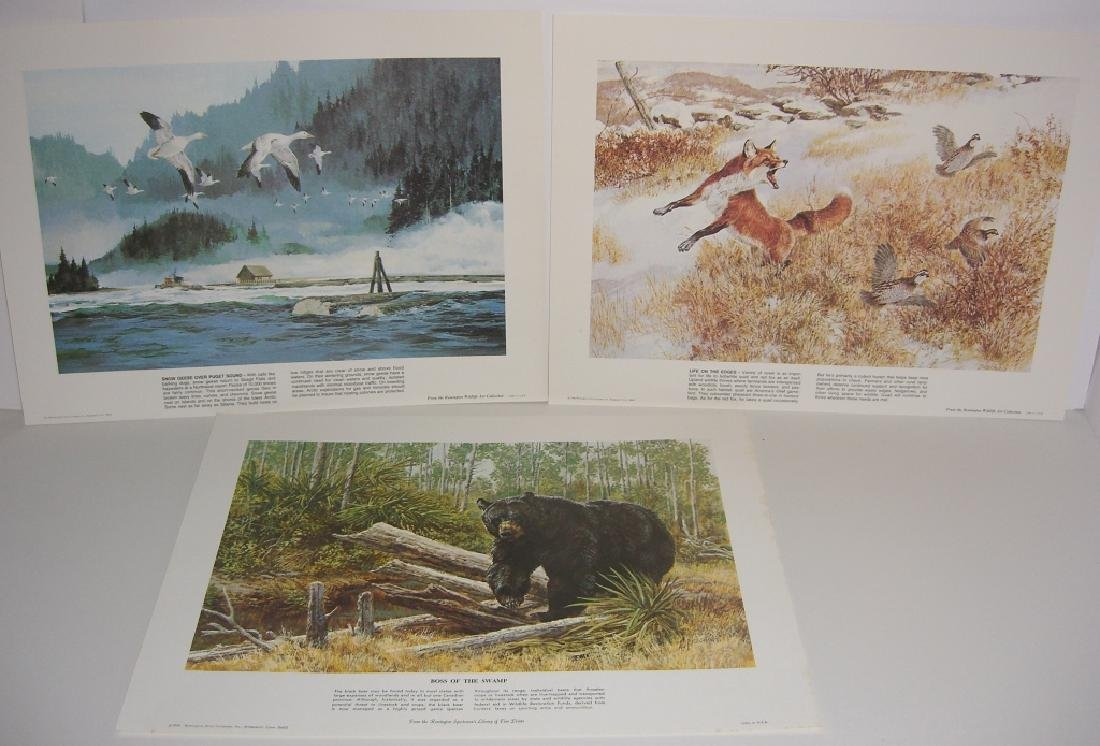 23 Remington Wildlife lithograph prints - 2