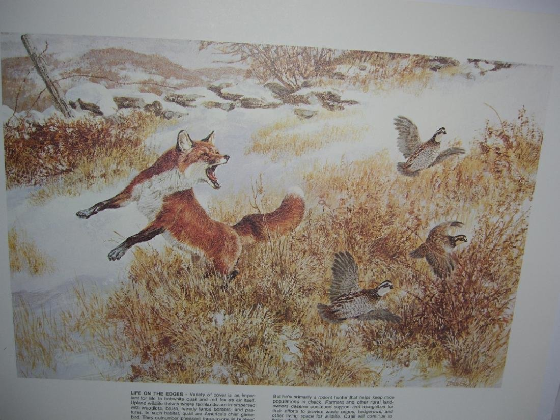 23 Remington Wildlife lithograph prints - 3