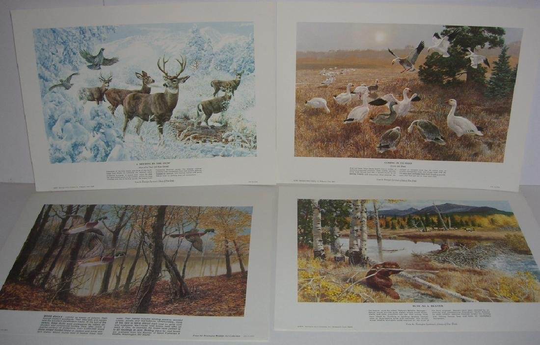 23 Remington Wildlife lithograph prints - 4