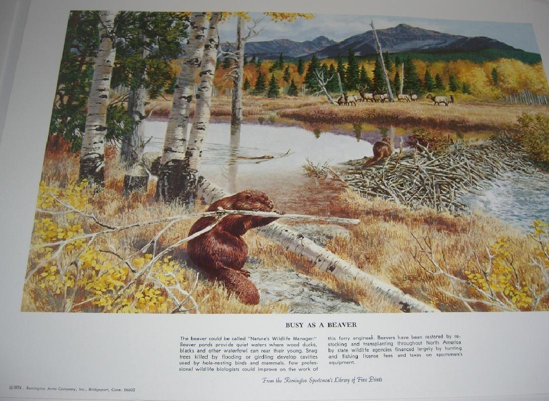 23 Remington Wildlife lithograph prints - 5