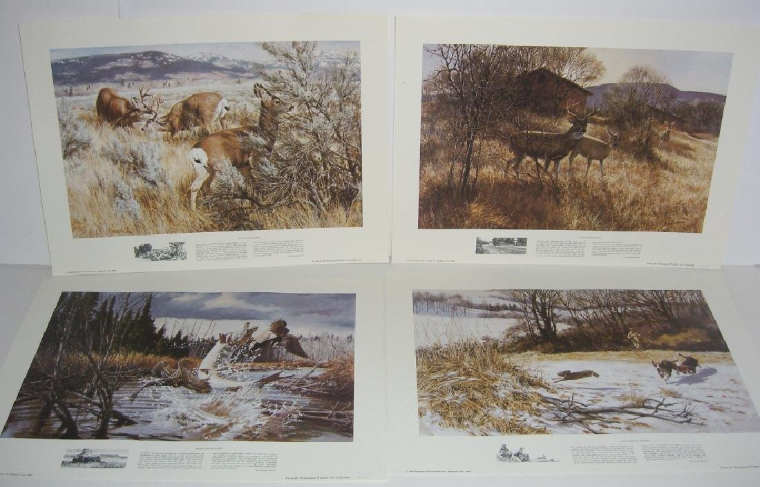 23 Remington Wildlife lithograph prints - 6