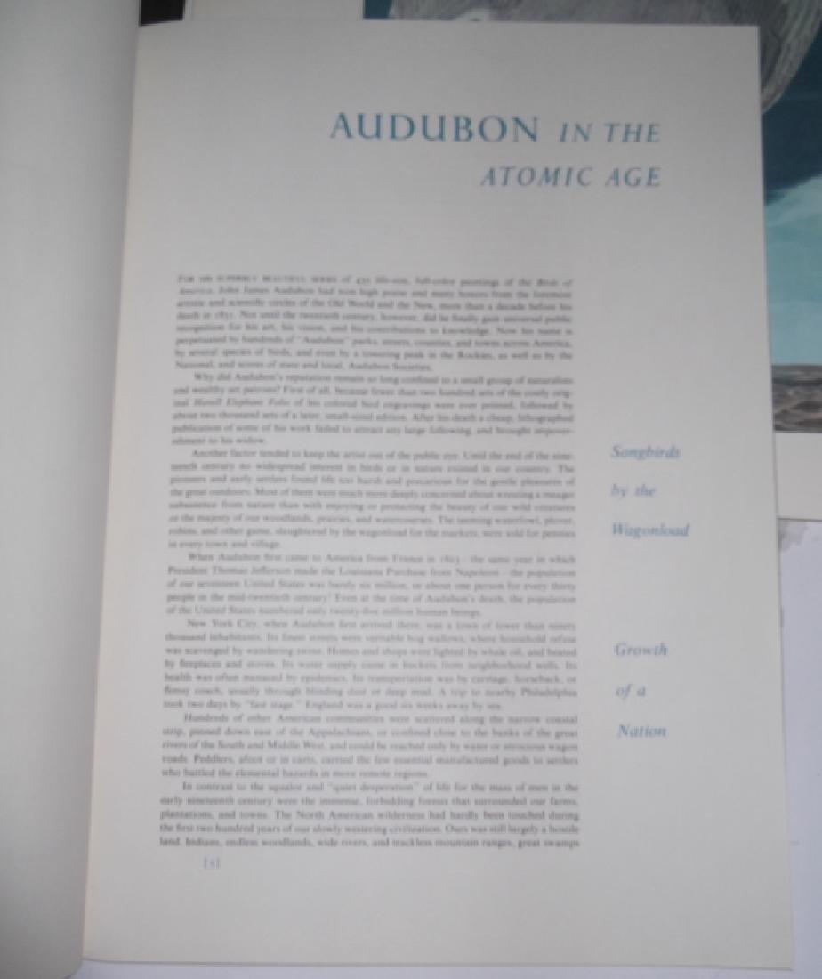 1964 The Audubon Portfolio - 11