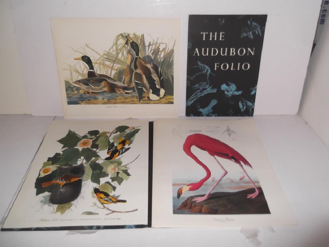 1964 The Audubon Portfolio