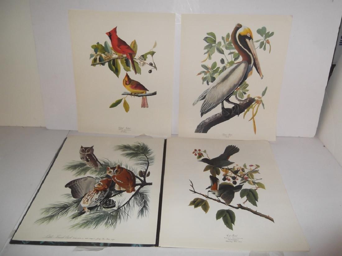 1964 The Audubon Portfolio - 7