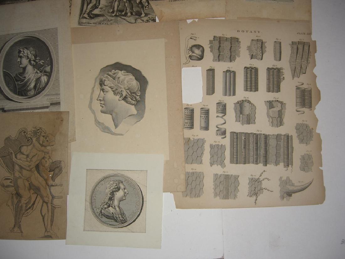 20 18th/19th century engravings/etchings - 4