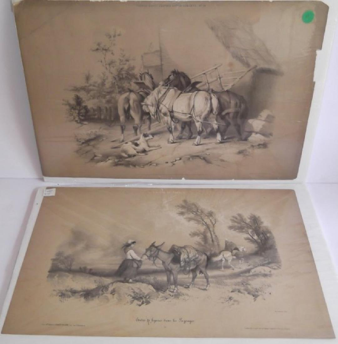 10 19th c. hand colored engravings - 2