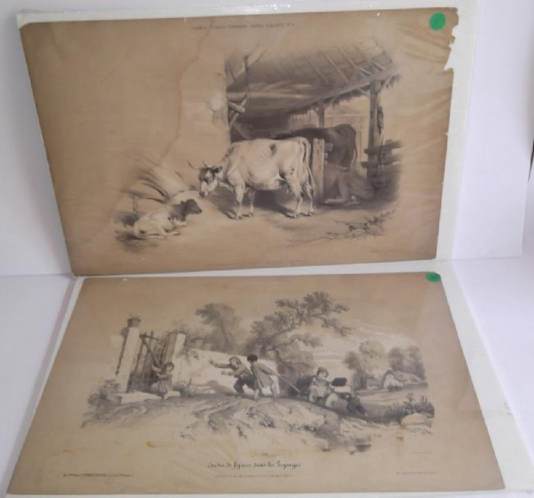 10 19th c. hand colored engravings - 4