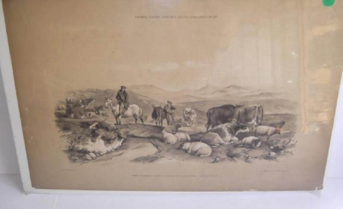 10 19th c. hand colored engravings - 6