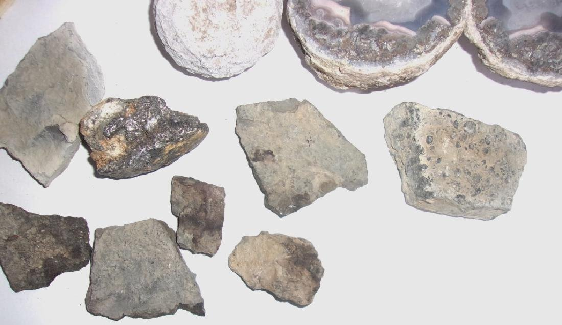collection of shells, fossils, carved stone, geode - 2
