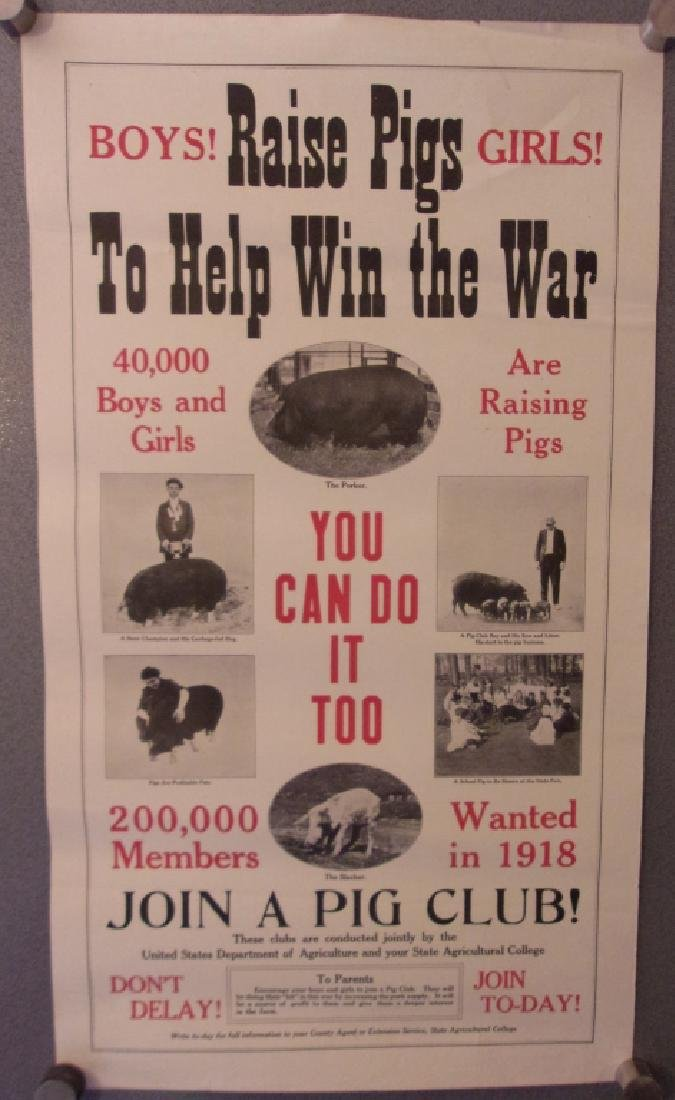 WWI 1918 Raise pigs to help win the war poster