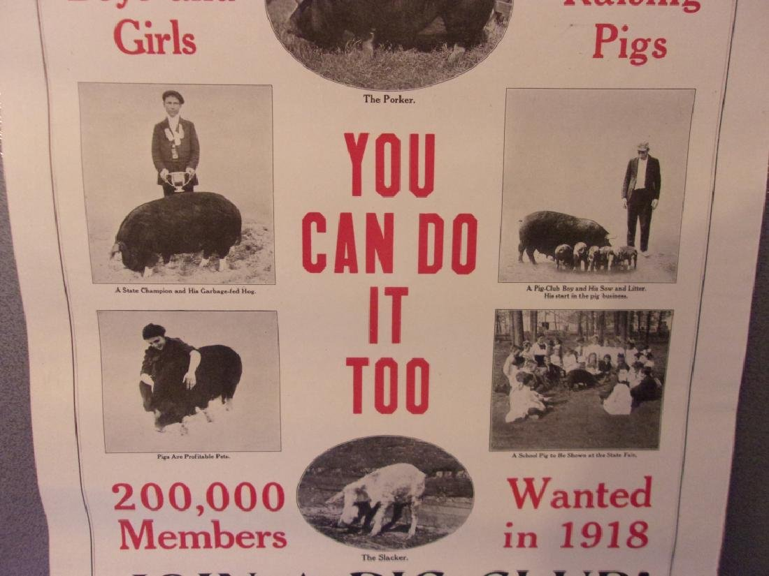 WWI 1918 Raise pigs to help win the war poster - 2