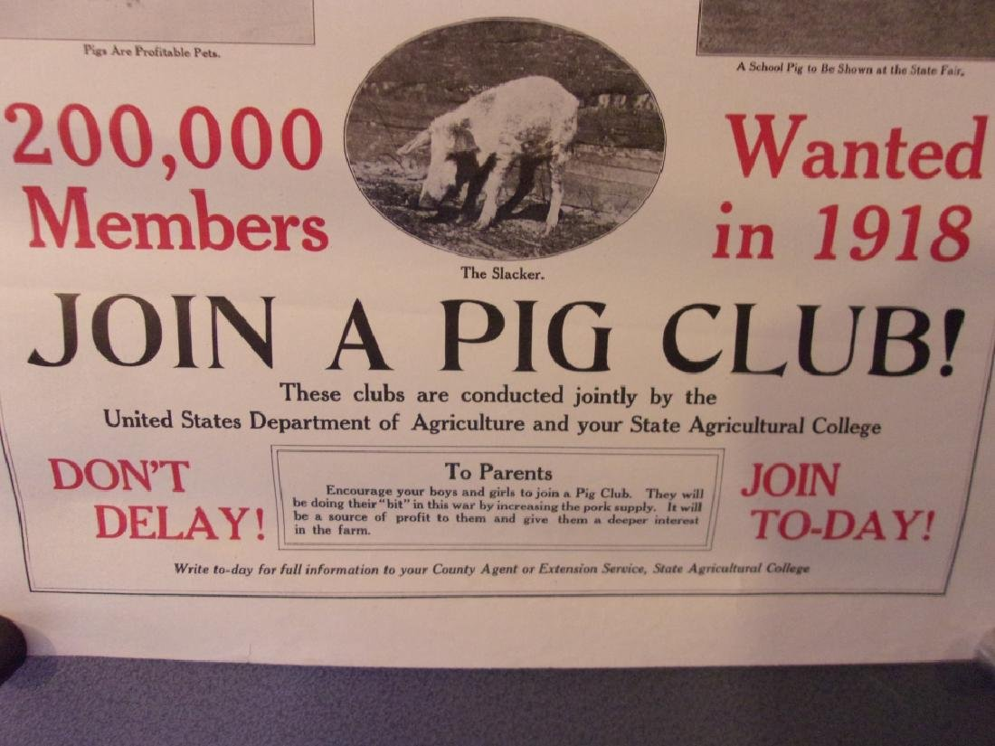 WWI 1918 Raise pigs to help win the war poster - 5