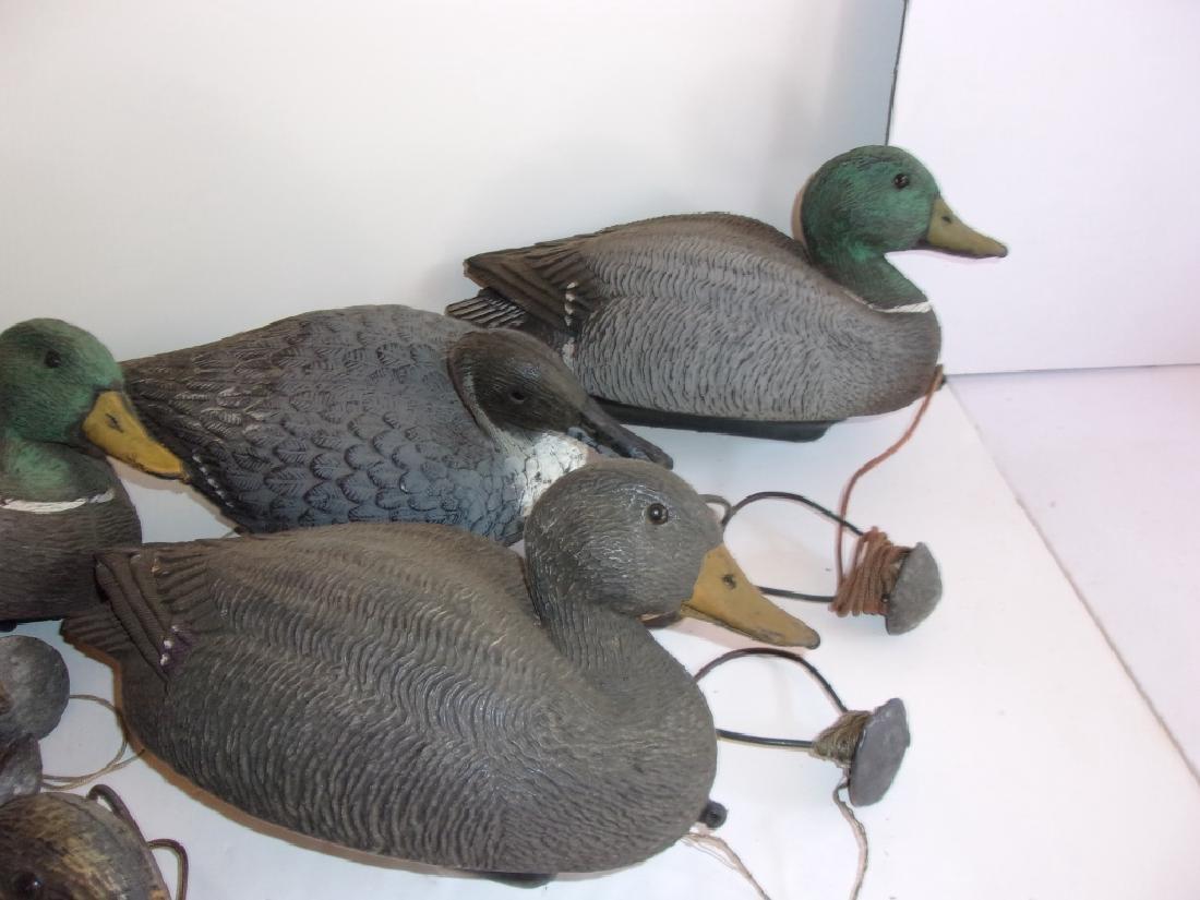 6 plastic duck decoys - 2
