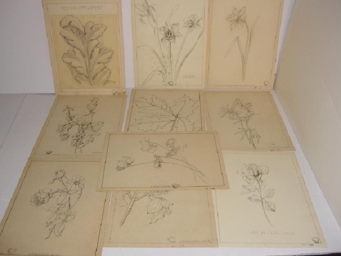 12 1930's original floral illustration drawings