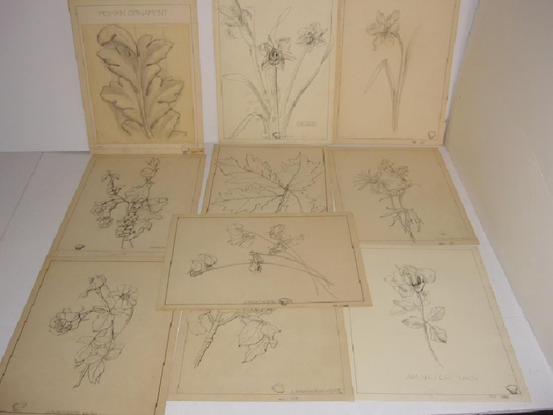 12 1930's original floral illustration drawings
