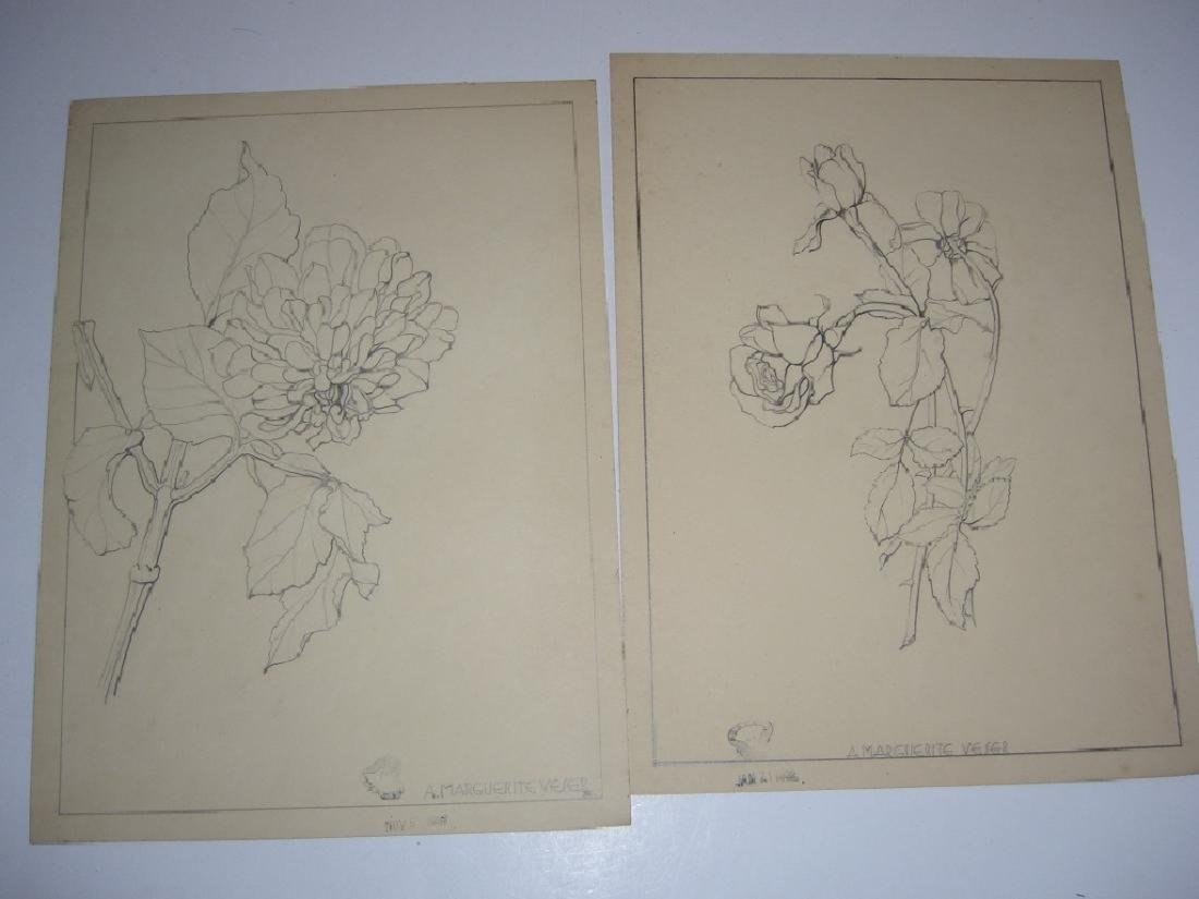 12 1930's original floral illustration drawings - 5
