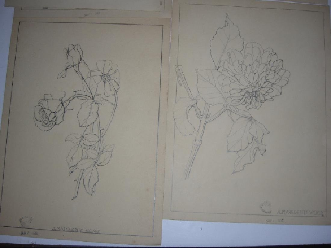 12 1930's original floral illustration drawings - 8