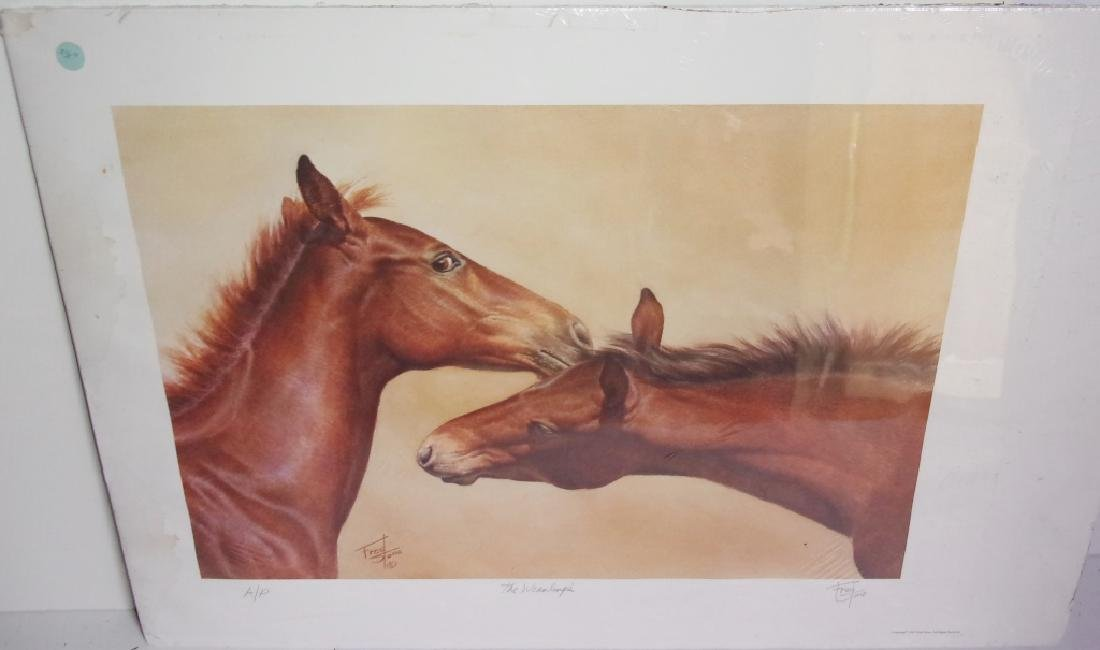 artist proof horse lithograph signed and numbered